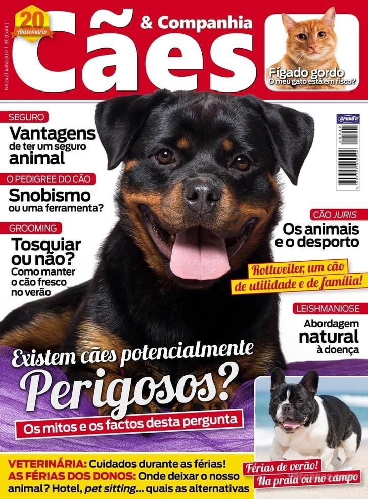 Cães & Companhia
